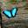 Butterfly by shahar12 d47zxrn