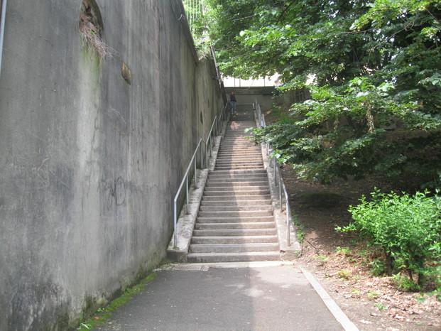 Scuola 20082