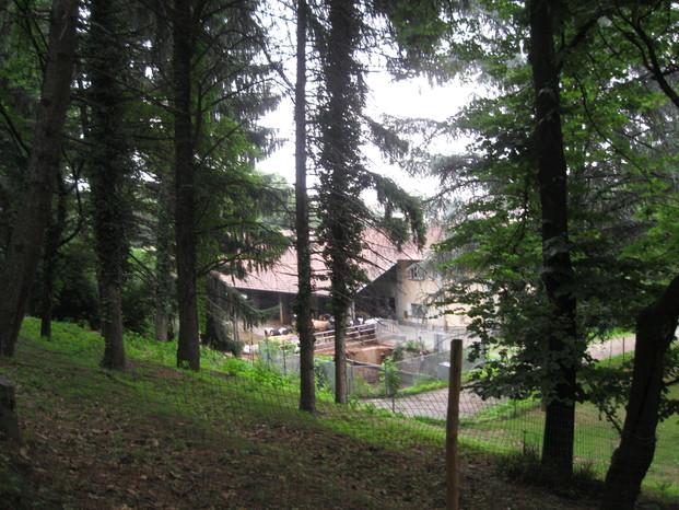 Scuola 20044