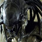 Alien vs predator requiem   02