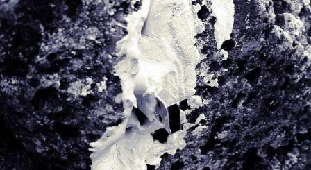 Immagine 20075
