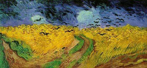 Campo di grano con volo di corvi