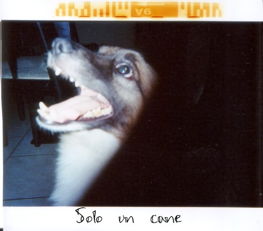 Untitled scanned 14