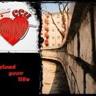 Ccu nurse heart cardiogram poster r82c429bd396a443bb85077af648beaa9 wad 400 horz