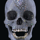 Hirst damien for the love of god laugh 2007