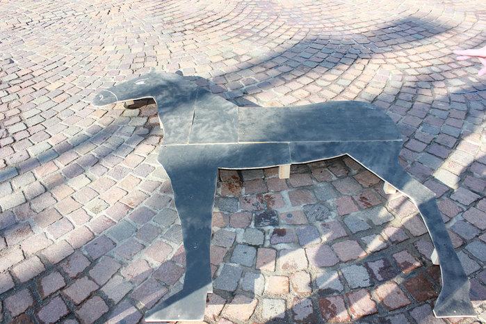 Cavallo 049