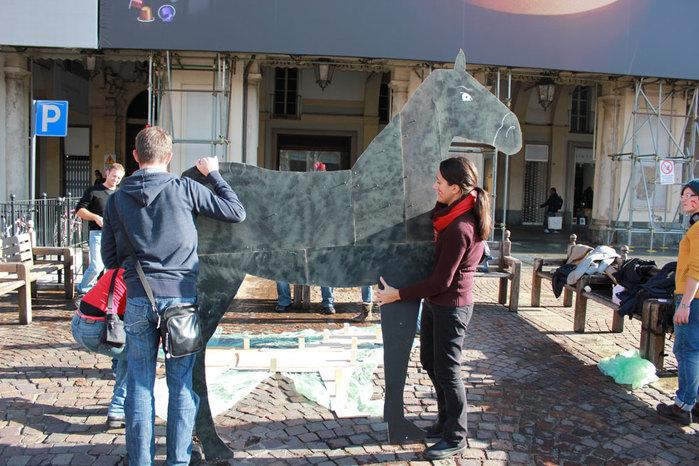 Cavallo 052