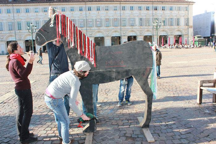 Cavallo 066
