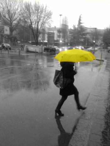 Pioggia 209