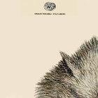 Cover book il giorno del lupo