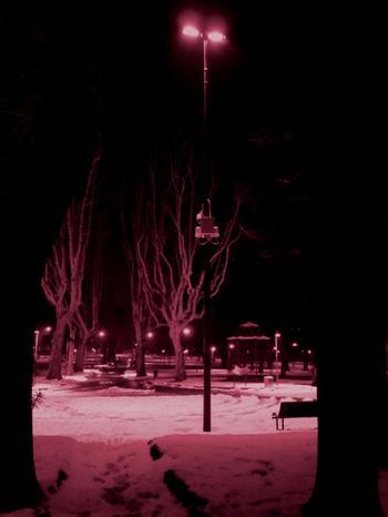 Notte 20rosa