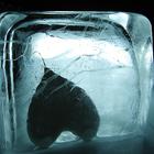Cuore ghiaccio