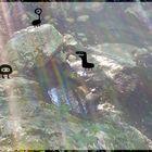Befunky 2013 07 31 0707.jpgbis