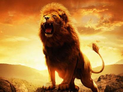 394 leoni
