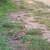 Img 20140622 191552