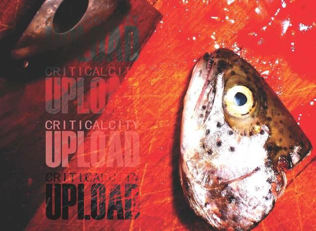 Criticalfish 20upload 204
