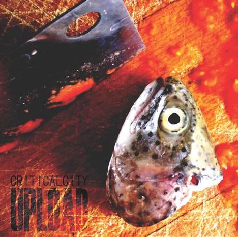 Criticalfish 20upload 201