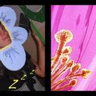 Collage 20di 20picnik