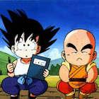 Goku e crilin 1