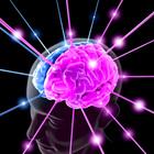 Cervello 202