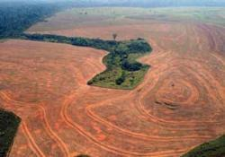 Deforestazione amazzonia1245830559
