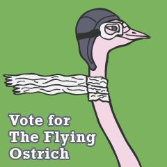 The flying ostrich piakcj d