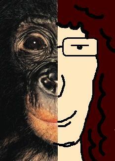 Edie scimmia