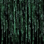 The matrix 600x450