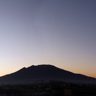 Fujifilm 20135