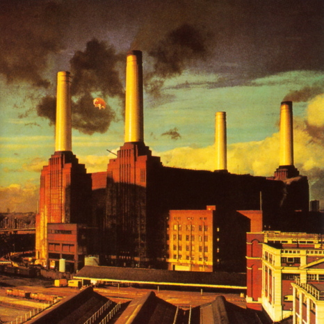 Pink floyd animals3