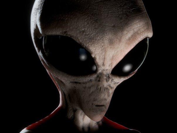 Alieno 20grey