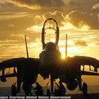 F 14 silhouette