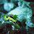Nudibranco 20pigiama