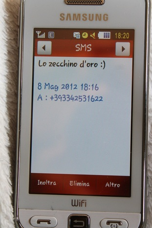 Img 4252
