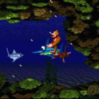 Donkey kong country snes i14