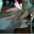 Video 20call 20snapshot 204