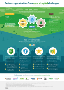 Natural_capital_infographic