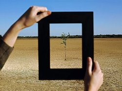 Framing-sustainability