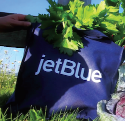 Jetblueseries