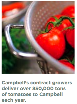 Agriculture sustainability at Campbell Soup