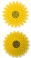 Nested Flowers 10 - 3D Sunflower - SVG File
