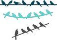Birds on Wire Border Set - SVG File