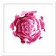 3D Layered Flower SVG, PDF, DXF File Formats