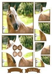 Beautiful Horse Watercolour Corner Stacker