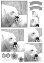 Polar Bear Kisses Watercolour Pyramid Topper
