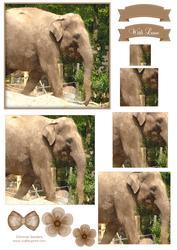 Elephant Watercolour Pyramid Topper