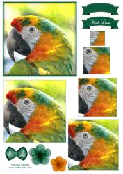Macaw Parrot Watercolour Pyramid Topper