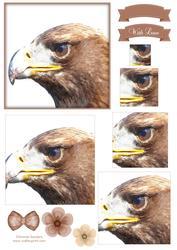Eagle Watercolour Pyramid Topper