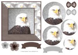 Eagle Watercolour 6x6 Card Front & Decoupage