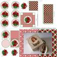 Christmas Poinsettia 3D Bauble & Gift Box Kit